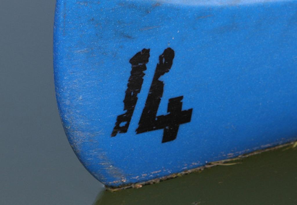 14-CC-Leo-Reynolds-550