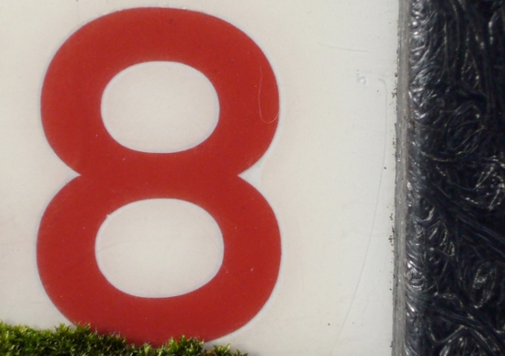 8-Caros-Lines-2