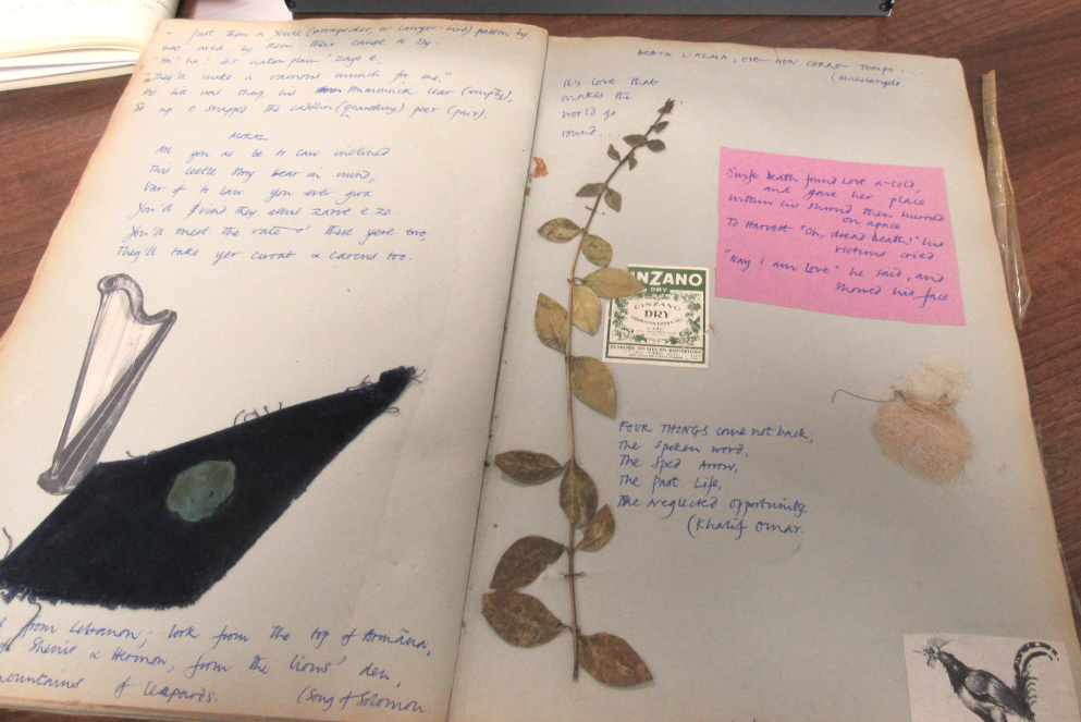 Photo of a scrapbook with leaves stuck in and notes scribbled