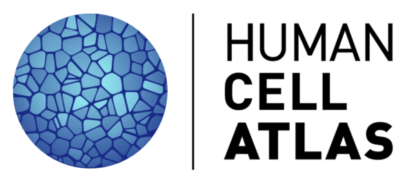 Human Cell Atlas logo (a blue sphere made up with mosaic parts)