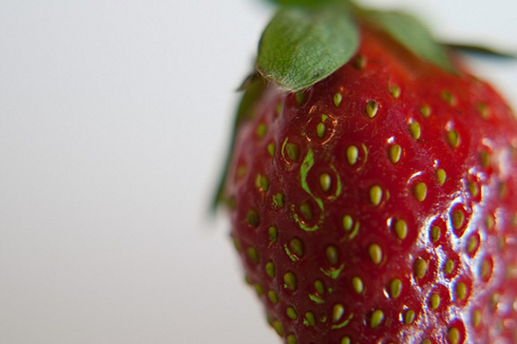 Strawberry-CC-xNBSx-550