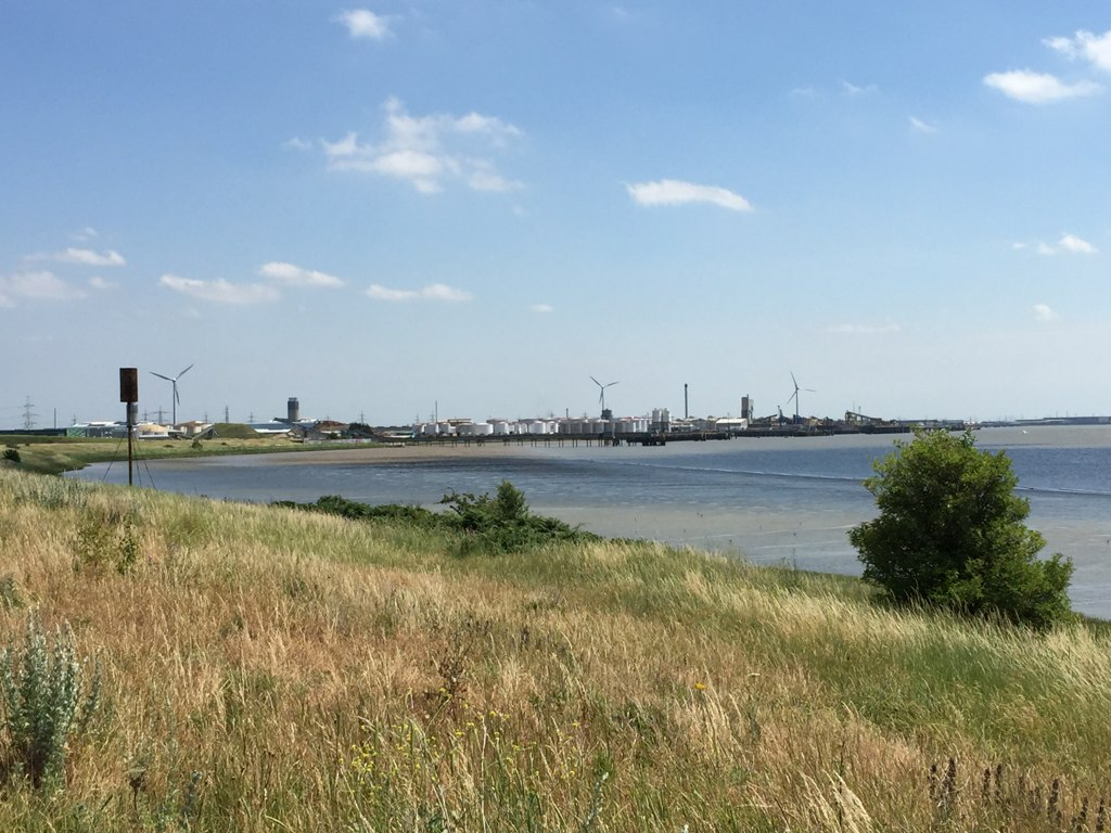 Photo of a landscape. Yellowing grass in the foreground, water to the right and a skyline of wind turbines and industry