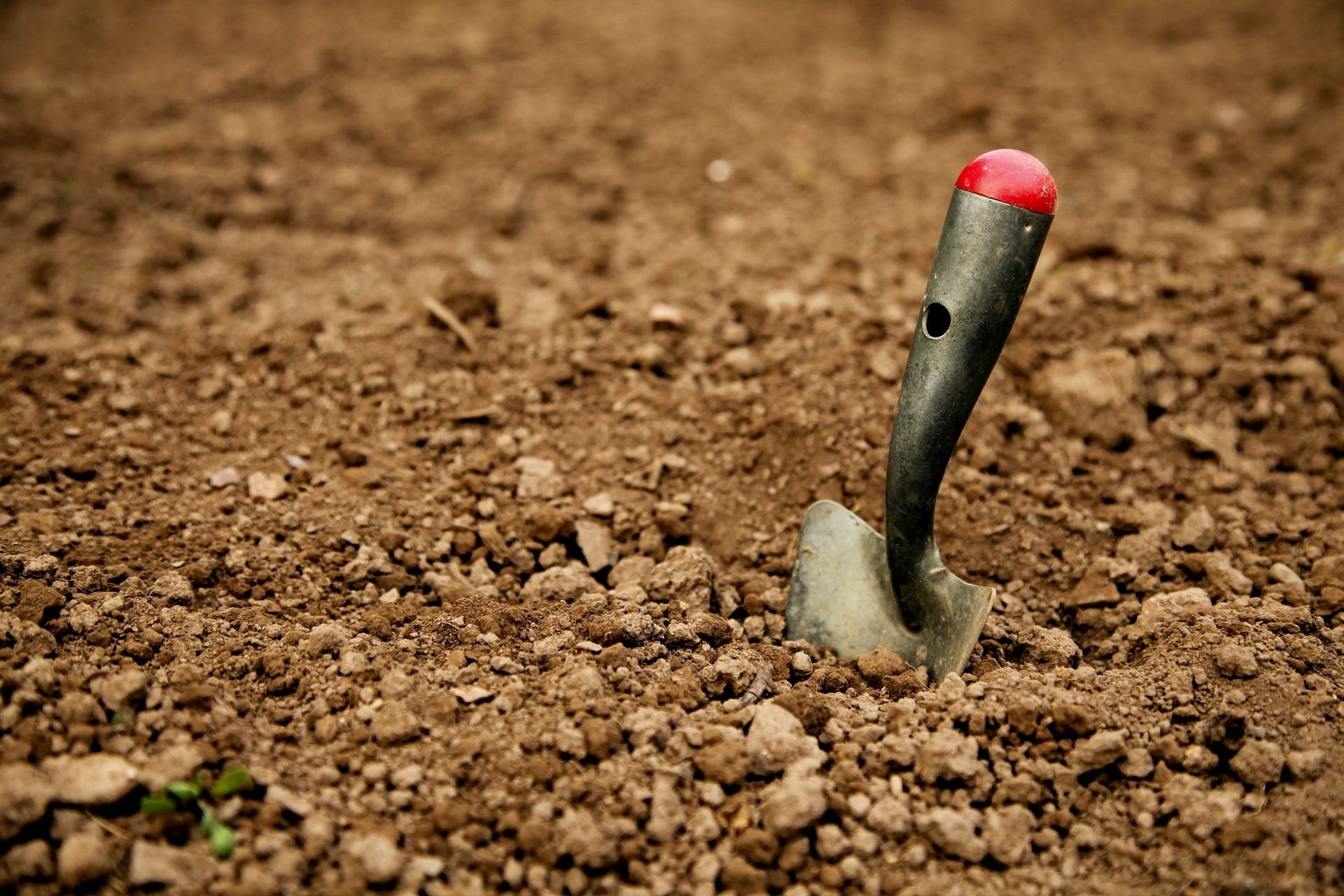 Image of shovel stuck in soil