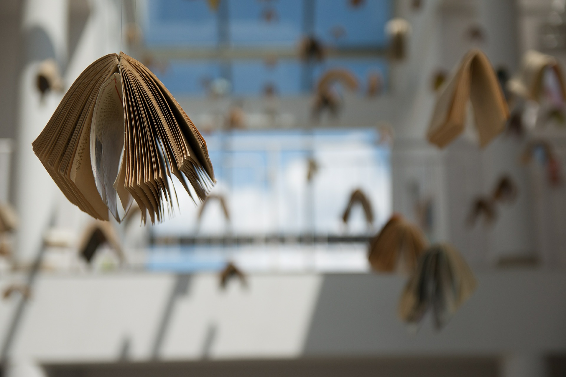 Photo of books suspended from the ceiling in a building with windows in the background