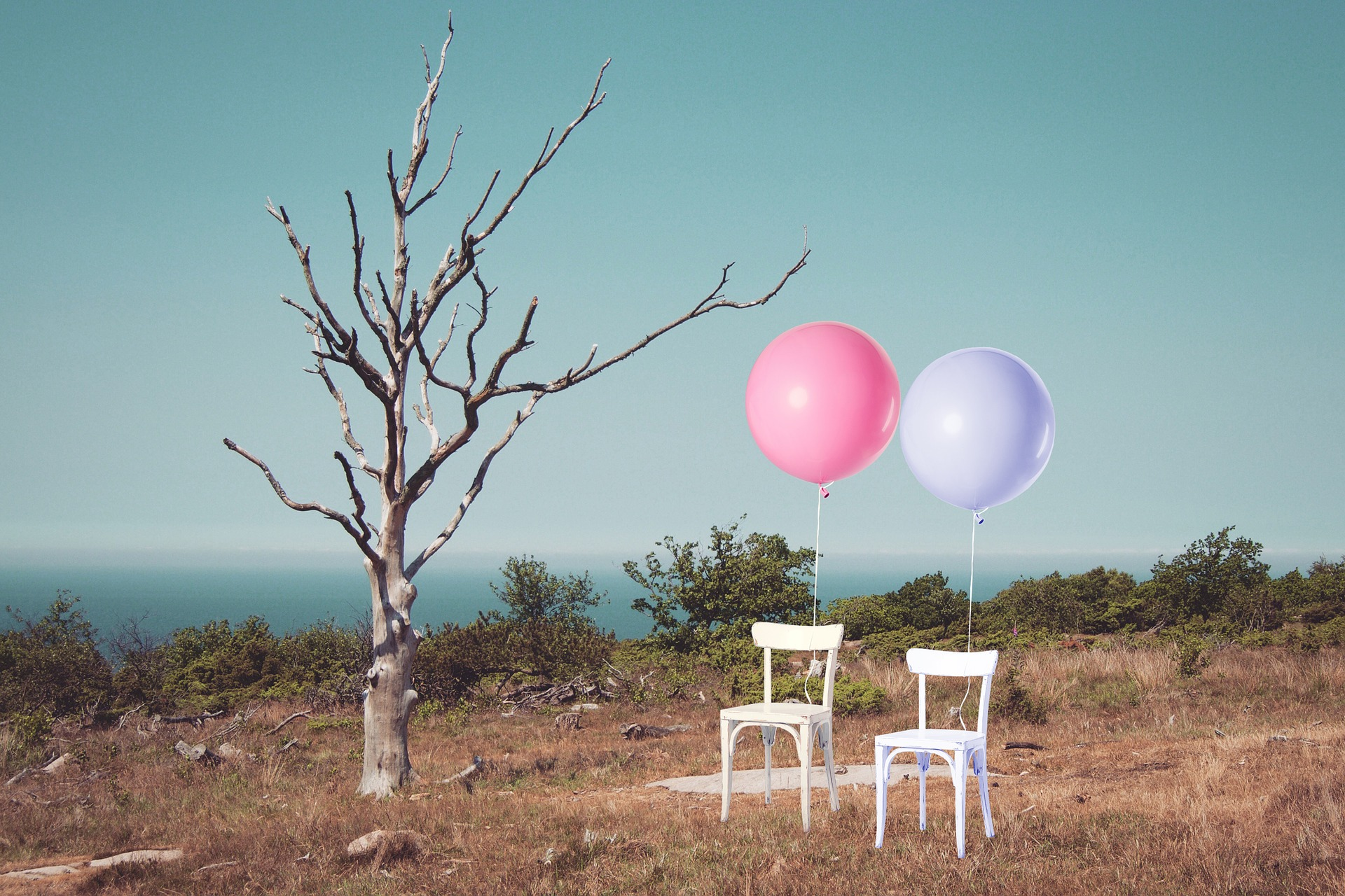 Abstract image of a barren landscape, with a tree with no leaves, two white chairs with one pink balloon and one lilac coloured balloon attached to each chair in the foreground