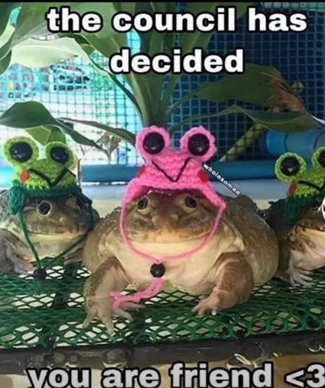 Frog meme: 'the council has decided you are friend'