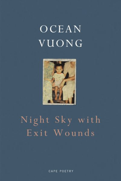 Book cover of Night Sky with Exit Wounds