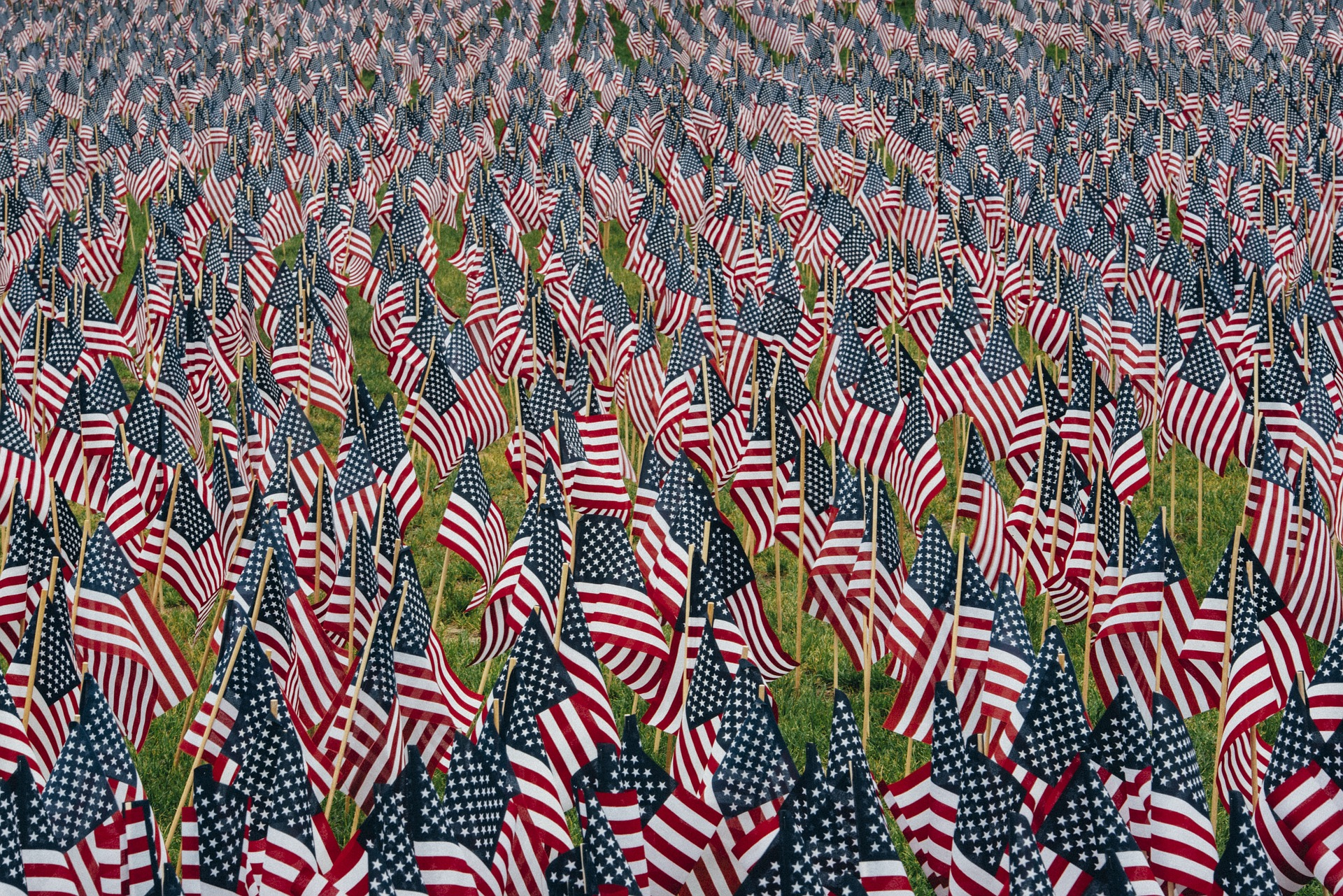 Edited photo of lots of American flags repeated, stretching into the distance