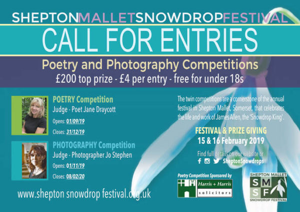 Image with the call for entries. All details can be found in the body of the text below!
